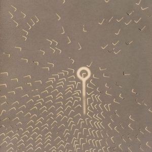 Vivo : Vainqueur - La grande boucle : Colorant projeté sur papier -  (65x50) - Quadryptique unique 4/4 - 2007