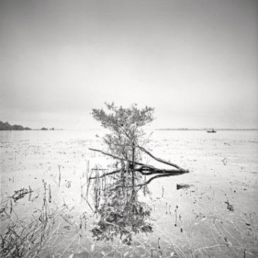 Collectif Artmeta – Gérard Duceau